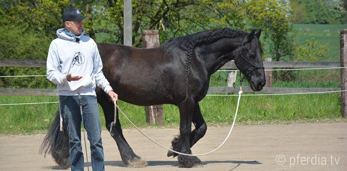 Peer-Classen-Horsemanship