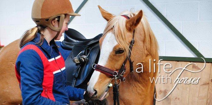 gemeinsame-zeit-mit-pferden
