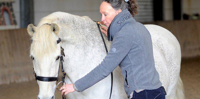 Pferd macht sich eng bei der Arbeit am Langzügel