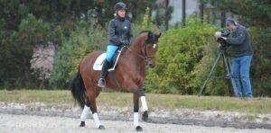 klimke-wehorse
