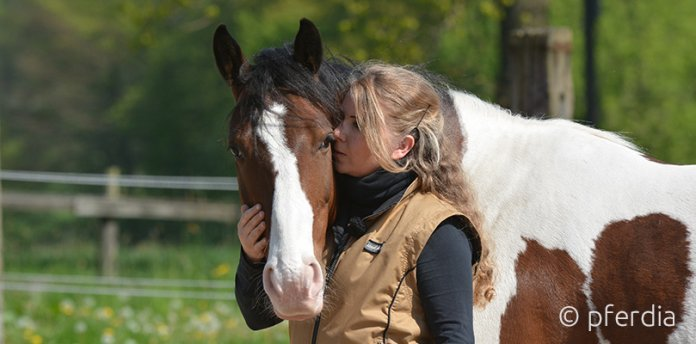 Mensch und Pferd Partnerschaft