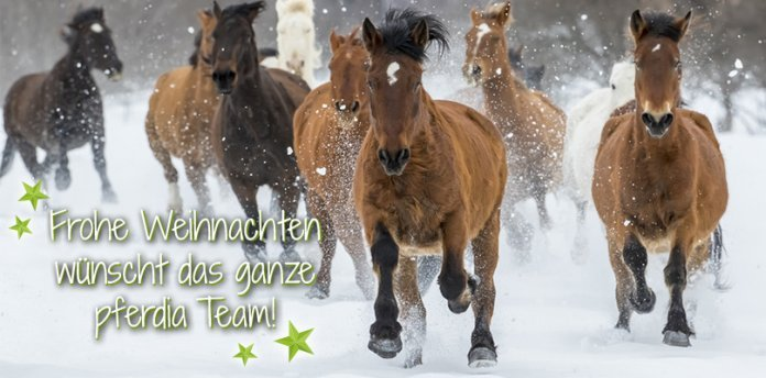 Frohe Weihnachten Pferd.10 Titel Für Die Weihnachtszeit Wehorse Blog