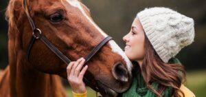 versicherung-pferd