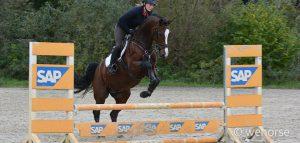 Springreiten Steilsprung Training