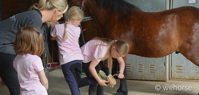Kinder lernen das Hufe auskratzen