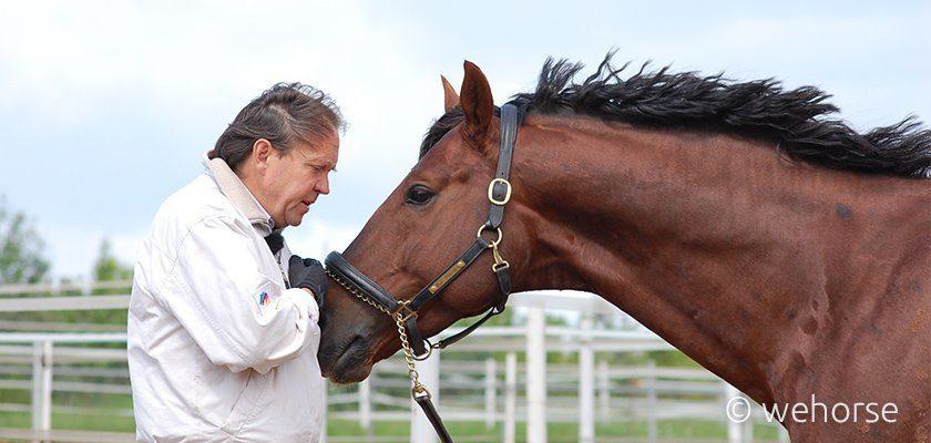 Stefan Schneider bringt dem Pferd anbinden bei
