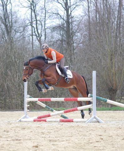 Springen-mit-Ingrid-Klimke