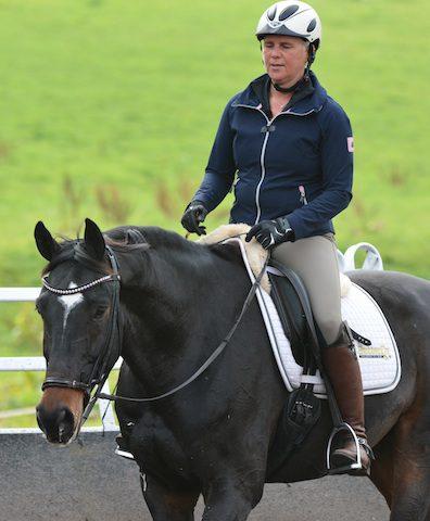 Ausbildung-von-Pferden