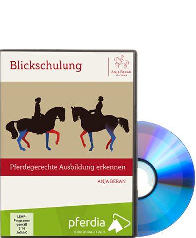 pferdegerechte-ausbildung-erkennen
