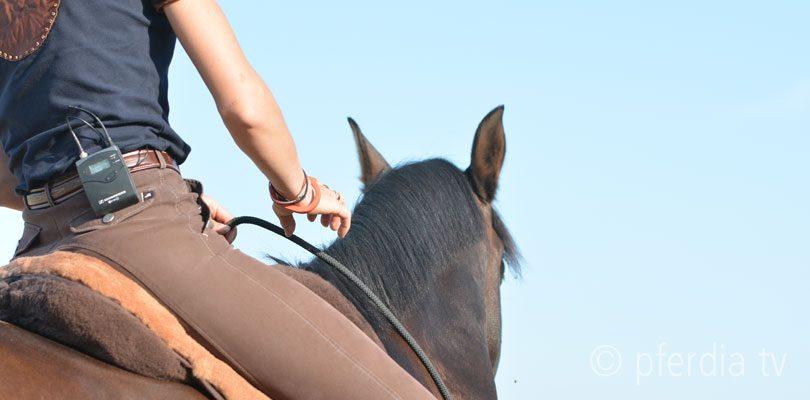 Der-richtige-Einsatz-des-Halsrings