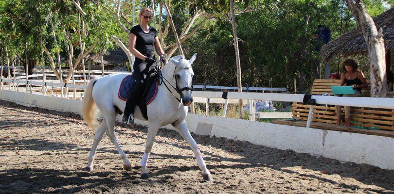 Pferde-reiten-auf-den-Philippinen