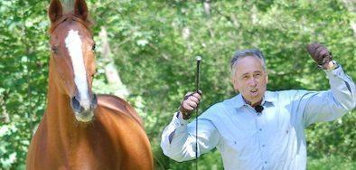 Pferde-von-Zauberhand-bewegt