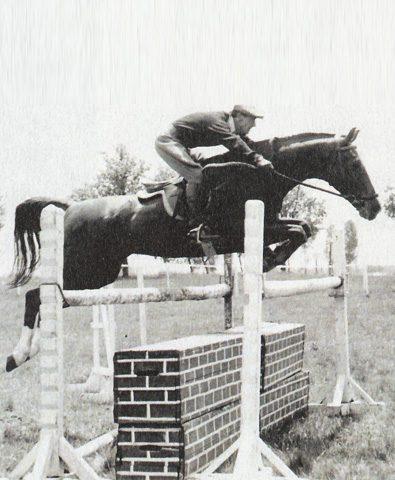 Pferd Springreiten