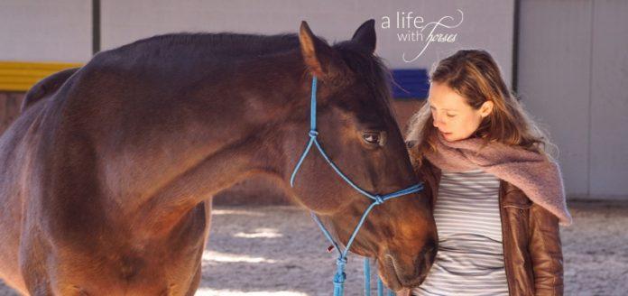 Braunes Pferd und Frau
