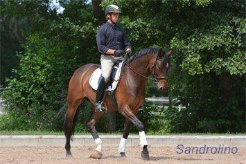 Im-Training-mit-Sandrolino