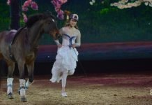 Mädchen in Kleid und braunes Pferd