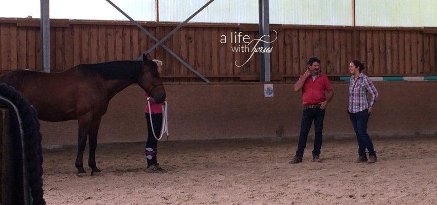 Pferd in Halle mit Besitzerin sowie Ian und Anke Benson