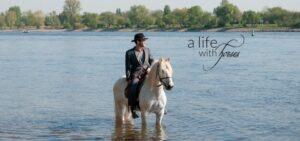 Camarguepferd im Fluss Rhein stehend mit Reiter