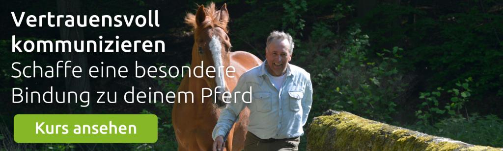 Kurs zum Thema Pferdeerziehung mit Wolfgang Marlie