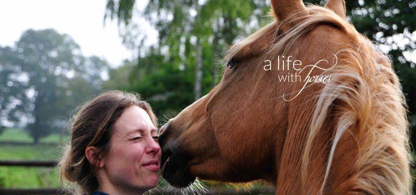 Pferdekopf und Menschenkopf