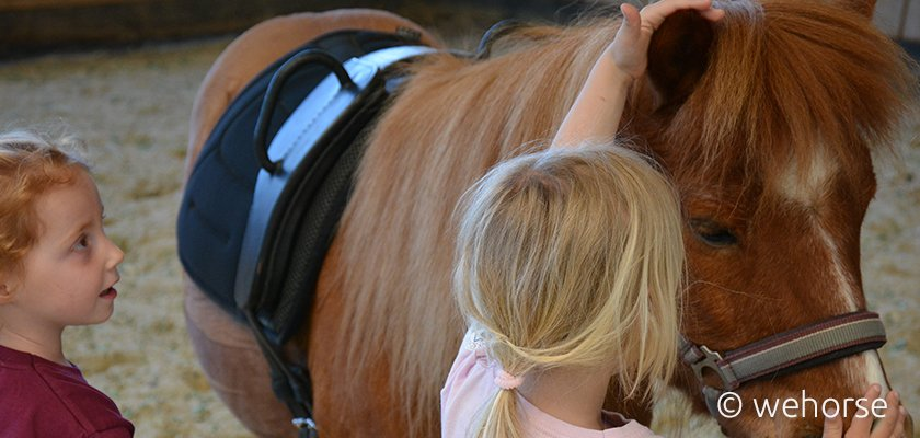 Zwei Kinder und ein Pony