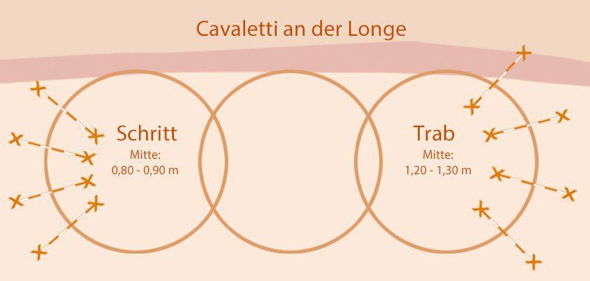 Cavaletti an der Longe