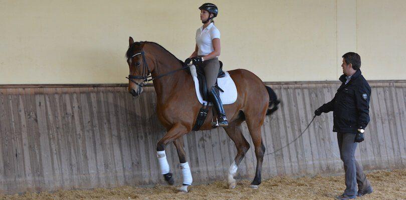 Jessica-von-Bredow-Werndl-im-Training