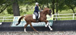 Trainerin Uta Gräf ist bekannt für ihre gut bemuskelten Pferde
