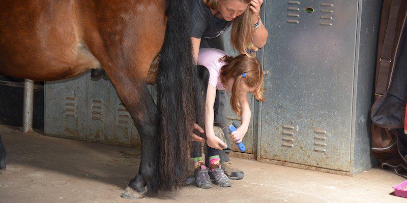 Pferdehufe auskratzen bevor der Hufschmied kommt