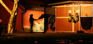 Silvester sollte man nachts am Stall immer kontrollieren