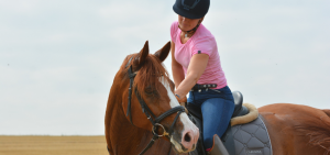 Pferdekauf-Probereiten