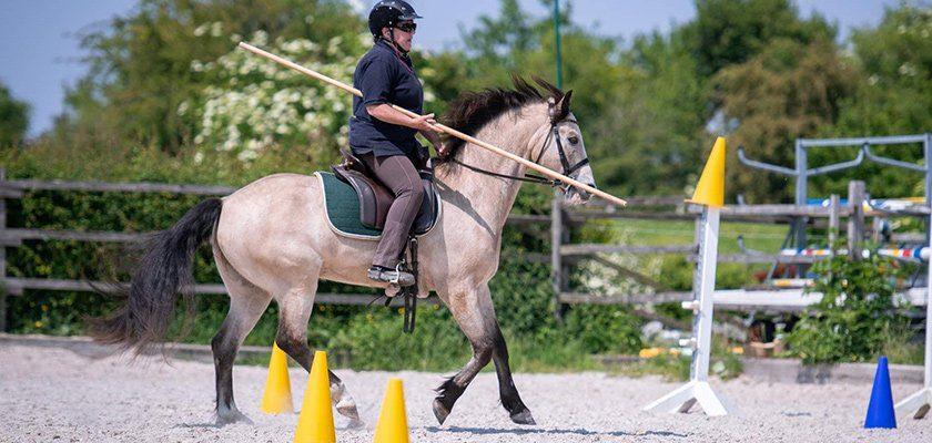working-equitation-garocha