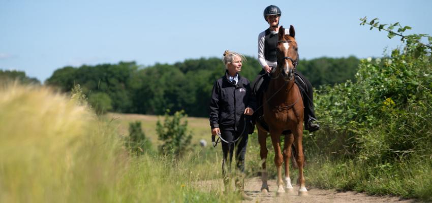 Ein funktionierendes Trio aus Besitzerin, Pferd und Reitbeteiligung