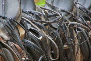 Ausruestung Pferd und Reiter
