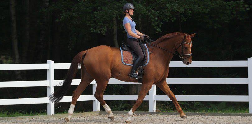 Eine Reiterin, die mit den Franklin-Bällen arbeitet.