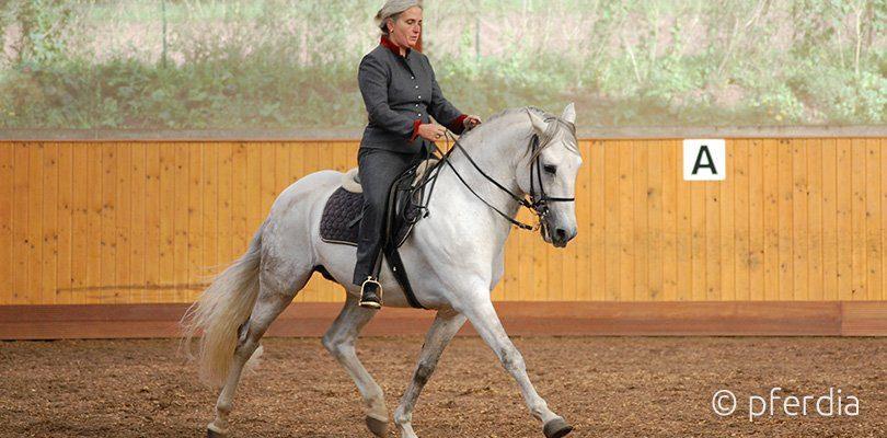 Eine Reiterin der Legerete Reitweise