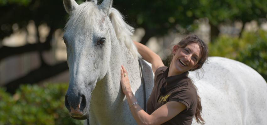 Spaß mit dem Pferd ohne Zaumzeug