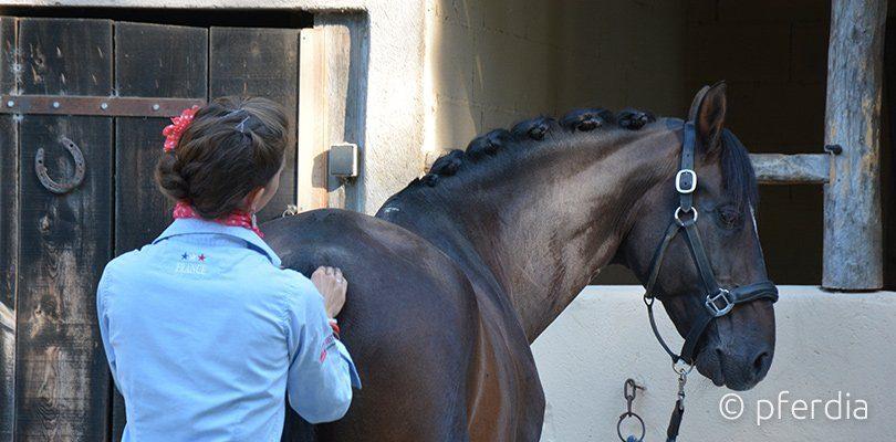 Alizee Froment wendet Akupressur und Massage bei ihrem Pferd an