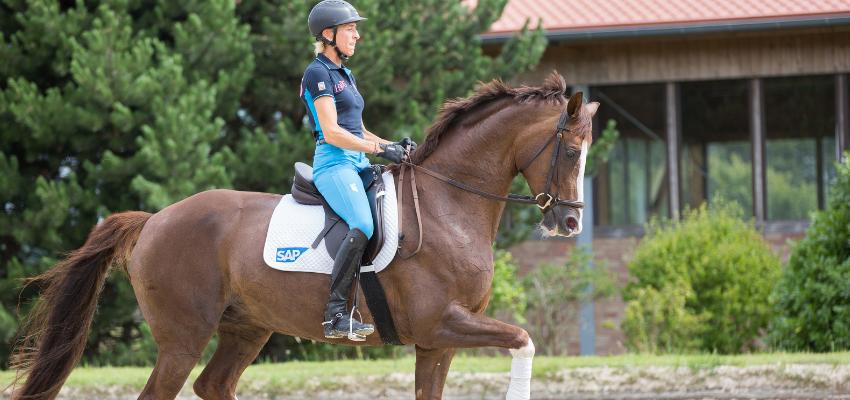 Ingrid Klimke hat einen nahezu perfekten Reitersitz