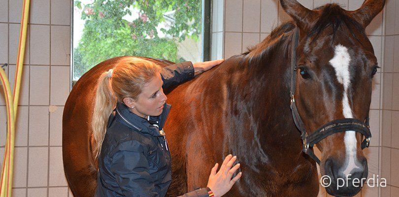 Jessica von Bredow Werndl wendet Akupressur und Massage bei ihrem Pferd an