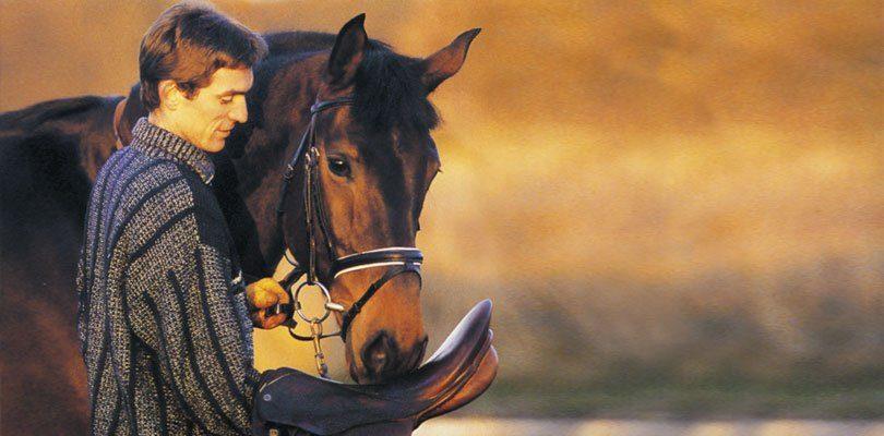 Tipps zum Pferd einreiten von Rudolf Zeilinger