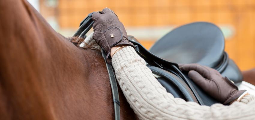 Ein passender Sattel ist das A und O für einen gesunden Pferderücken