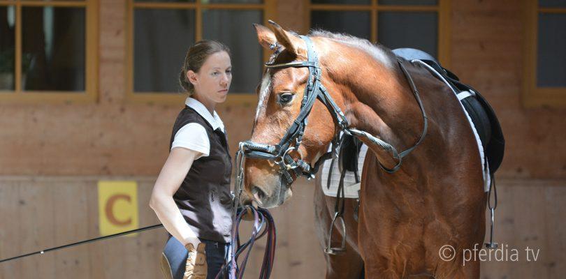 Junge Pferde ausbilden mit Anja Beran