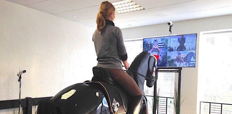 Sitzkontrolle mit dem Reitsimulator