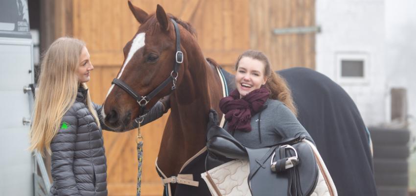 Passende Ausrüstung kann die Haut des Pferdes schonen