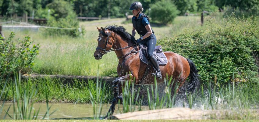 Durch Wasser galoppieren ist der Traum vieler Reiter