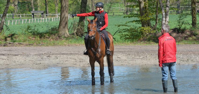 Ingrid Klimke weiß wie man ein Pferd durch Wasser reitet