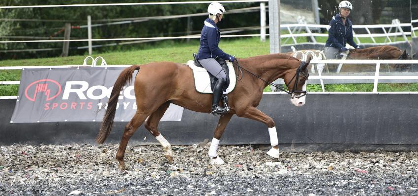 Uta Gräf reitet ihr Pferd in Dehnungshaltung