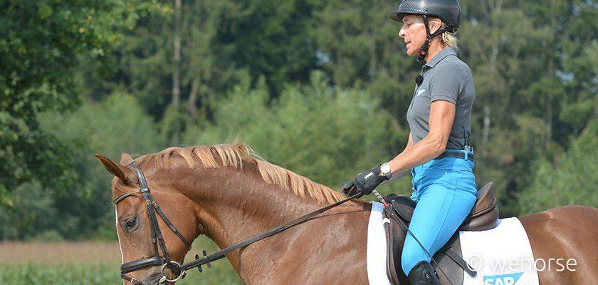 horse-riding-hands-ingrid-klimke