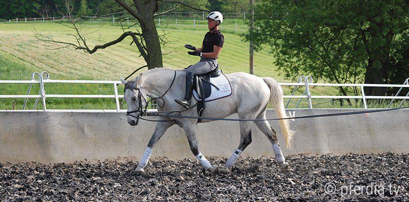 riding-seat-exercise